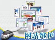 网站维护服务