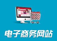 电子商务电子政务网站定制